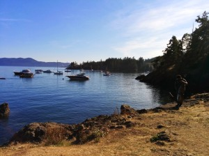And I haven't even told you about Doe Bay yet.