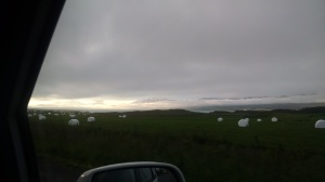 Hay Bales in Iceland